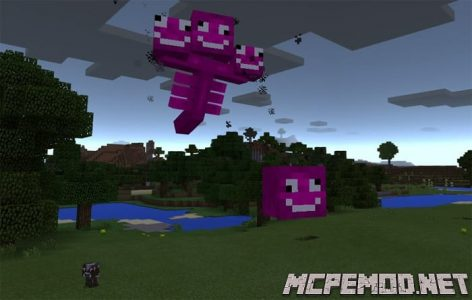 crazy wither