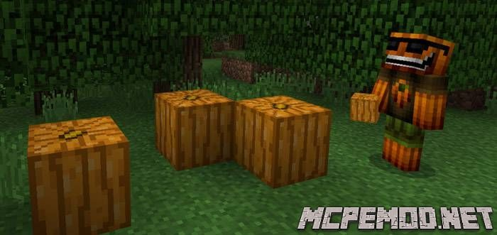 Текстур пак Uncarved Pumpkin MCPE