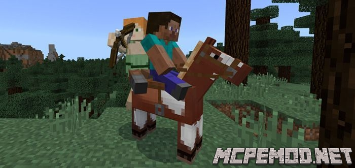 player horse riding